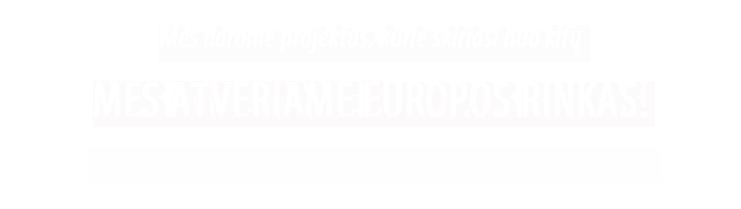 Mes darome projektus, kurie skiriasi nuo kitų - Lietuva, Estija, Latvija, Vokietija, Prancūzija, Italija, Suomija